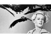 """réalisateur remake """"Les oiseaux""""sera…."""