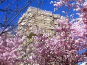 printemps Batignolles
