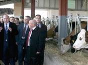 Projet d'élevage bovin partenariat avec britanniques (ministre)