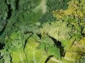 Kale project, heuuu mais c'est quoi chou