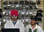 Quand légalisation cannabis provoque boom immobilier