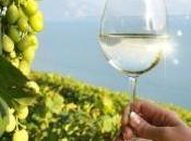régions françaises viticoles classent parmi plus populaires monde