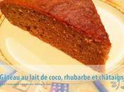 Gâteau lait coco-rhubarbe-châtaigne (sans gluten, sans lait, soja)