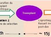 MICROBIOTE FÉCAL: C'est désormais médicament autorisé essais cliniques ANSM