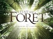 était forêt voyage cœurs forêts