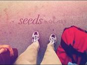 lunettes Google dans court métrage émouvant (Seeds)