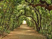 Jardins spectaculaires pleine ville
