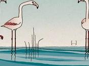 Ouvrir cage flamant rose