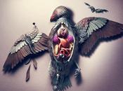 Natures mortes très colorées Chris Turner