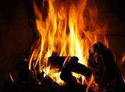 choisir pour chauffage bois, Cheminées Poêles bois