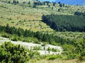 Salta Bartas Lozère Trail course sensas