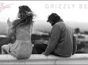 Single Grizzly Bear Angus Julia Stone