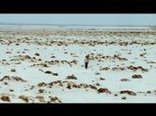 [Test Blu-ray] 25ème HEURE