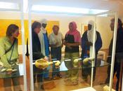 musée Louviers Yves Martin commente dessins peintures néolithique algérien