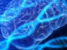Alzheimer Découverte d'un nouveau biomarqueur