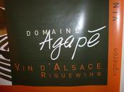 Visite-dégustation domaine l'Agapé Vincent Sipp Riquewihr Alsace) première partie