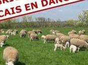 agriculteurs français sont danger