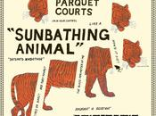 PARQUET COURTS Sunbathing animal (2014)
