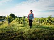 Biodynamie viticole quel vous amène