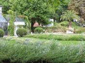 Paris bucolique, pause détente dans Parc Bercy