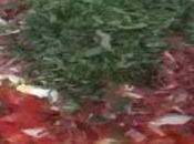 Salade pomme terre jambon ventrêche roulée