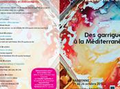 Festival d'aquarelle Narbonne garrigues Méditérannée