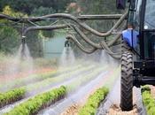 Parkinson agriculteurs minimisent encore danger pesticides