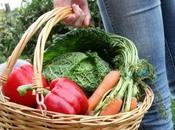 Moins PRÉ-ÉCLAMPSIES avec légumes BIO? Open
