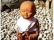 bodhisattva Zang Wang