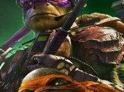 Ninja Turtles Critique