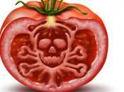 L'humain avant profit. L'Europe vient peut-être d'ouvrir voie Monsanto pour cultiver notre continent