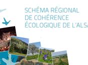 5ème réunion Comité Alsacien Biodiversité avis favorable pour SRCE