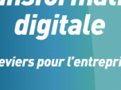 Transformation Digitale, leviers pour l'entreprise David Fayon Michaël Tartar