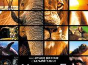 Découvrez Nature 24/12 cinéma