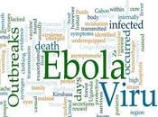 curcumine aide contre Ebola?