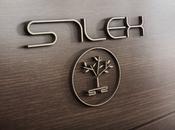 Entrevue design avec S1lex