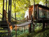 Treehouse, Free Spirit