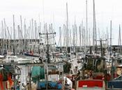 Rochelle pourquoi marins-pêcheurs vont manifester mardi décembre 2014