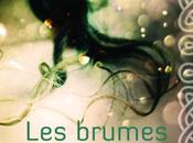 brumes d'Avallach, tome