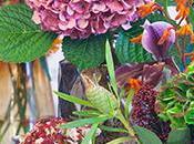 Pour votre décoration florale Noël, pensez l'Hortensia*