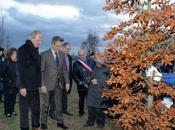 Plantation d'un arbre laïcité cœur Parc Carrières René Dumont