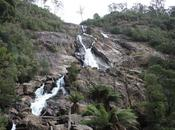 Découverte environs Launcheston Saint Patrick Tasmanie
