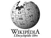 L'année 2014 selon Wikipédia Sotchi, Bucket Challenge Ferguson