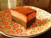 Bûche chocolat/framboise pour multi-intolérants
