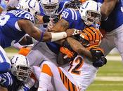Sautons conclusions Bengals Colts