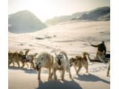 Groenland, véritable terre d'aventure