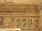 animaux pharaons xiii. singes familiers babouins temple d'hathor deir el-medineh