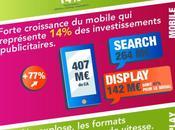 chiffres l'e-pub 2014