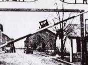 Auschwitz, voir n'est qu'une première étape pour comprendre