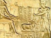 animaux pharaons xvi. oryx différentes techniques pour sacrifier